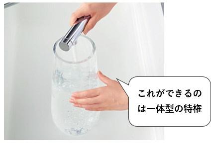 浄水器一体型(内蔵型)はハンドシャワー型もある